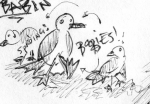 blue-footed-boobies.png
