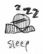 status-sleep.png